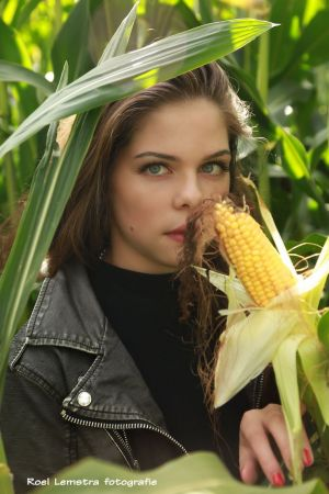 Auteur fotograaf Roel Lemstra - looking good with corn