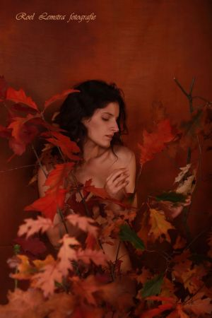 Auteur fotograaf Roel Lemstra - autumn feelings
